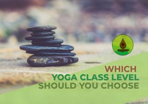 yoga level which class you should choose