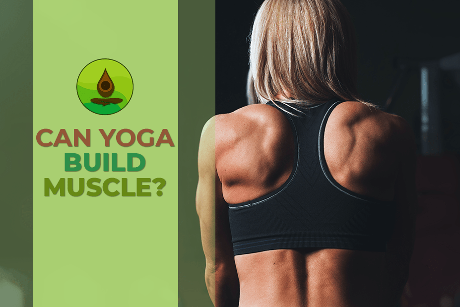 can you build muscle with yoga